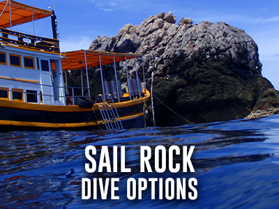 Sail Rock The best dive site Koh Phangan