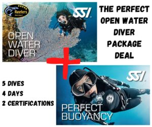 ssi open water course perfect buoyancy specialty